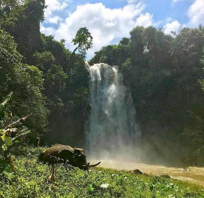 Tên thác Pongour ở Lâm Đồng có ý nghĩa gì? - Ảnh 4.