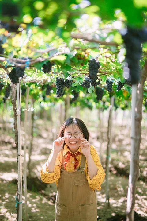 Check-in Ninh Thuan, thien duong moi cua tin do du lich hinh anh 24