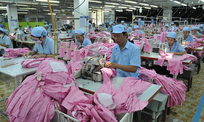 Hải quan TP HCM chỉ tên 1.000 doanh nghiệp nợ thuế đến nghìn tỉ nhưng mới thu được 70 triệu đồng - Ảnh 2.