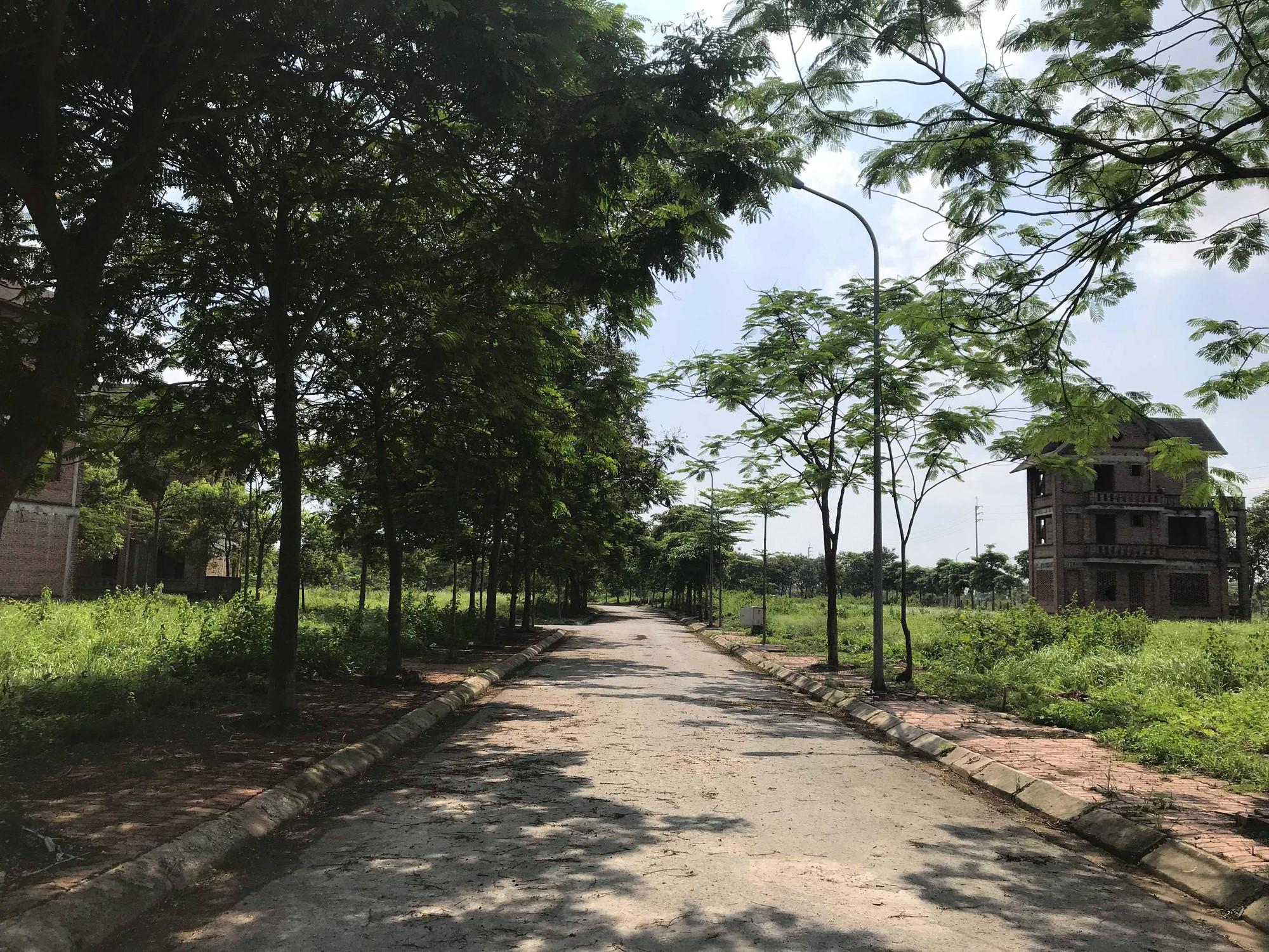 Dự án 900 tỉ đồng tại Mê Linh trở thành nơi chăn nuôi dê - Ảnh 6.