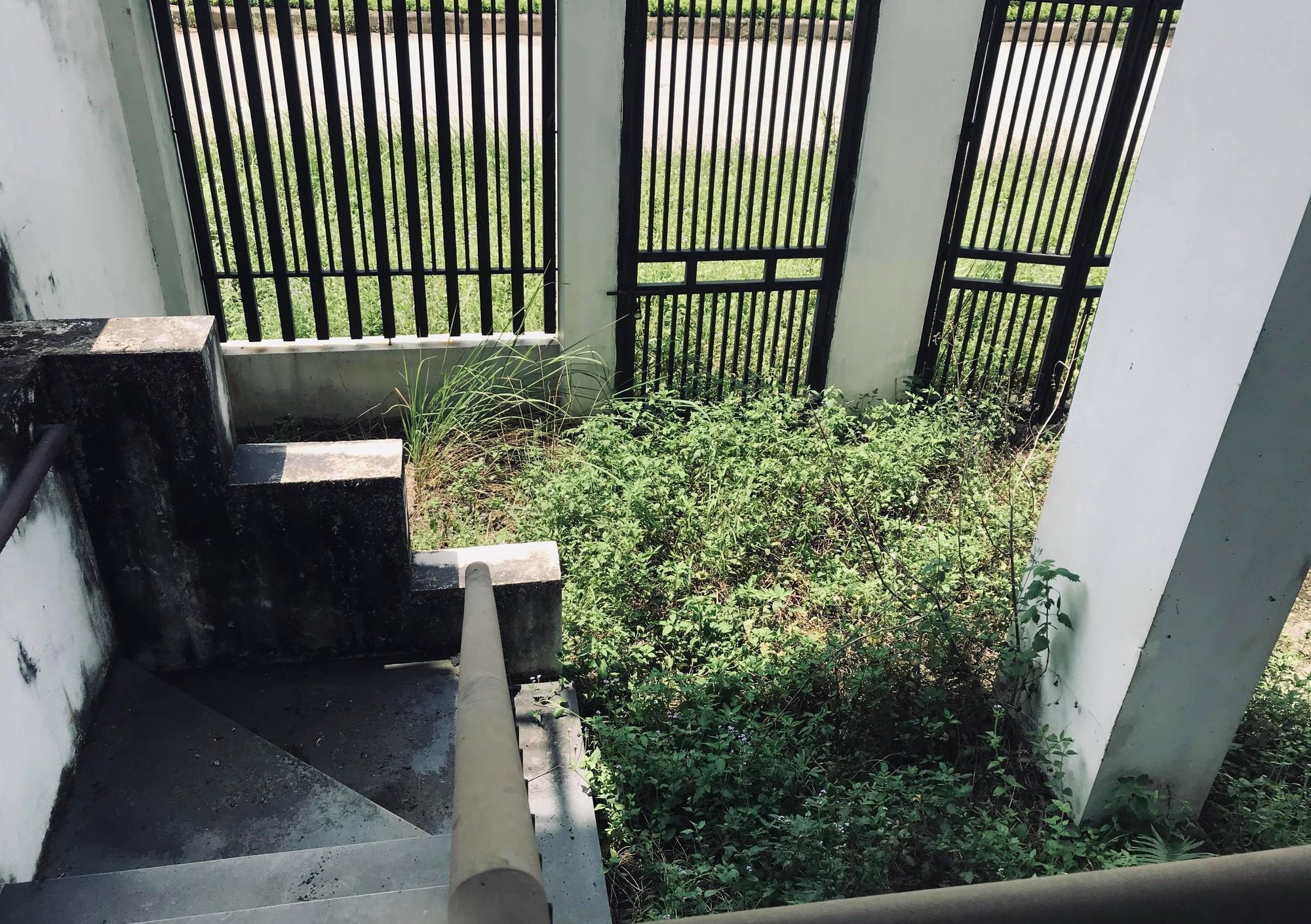 Hàng nghìn tỉ đồng bị chôn vùi tại khu đô thị bỏ hoang Minh Giang Đầm Và - Ảnh 11.