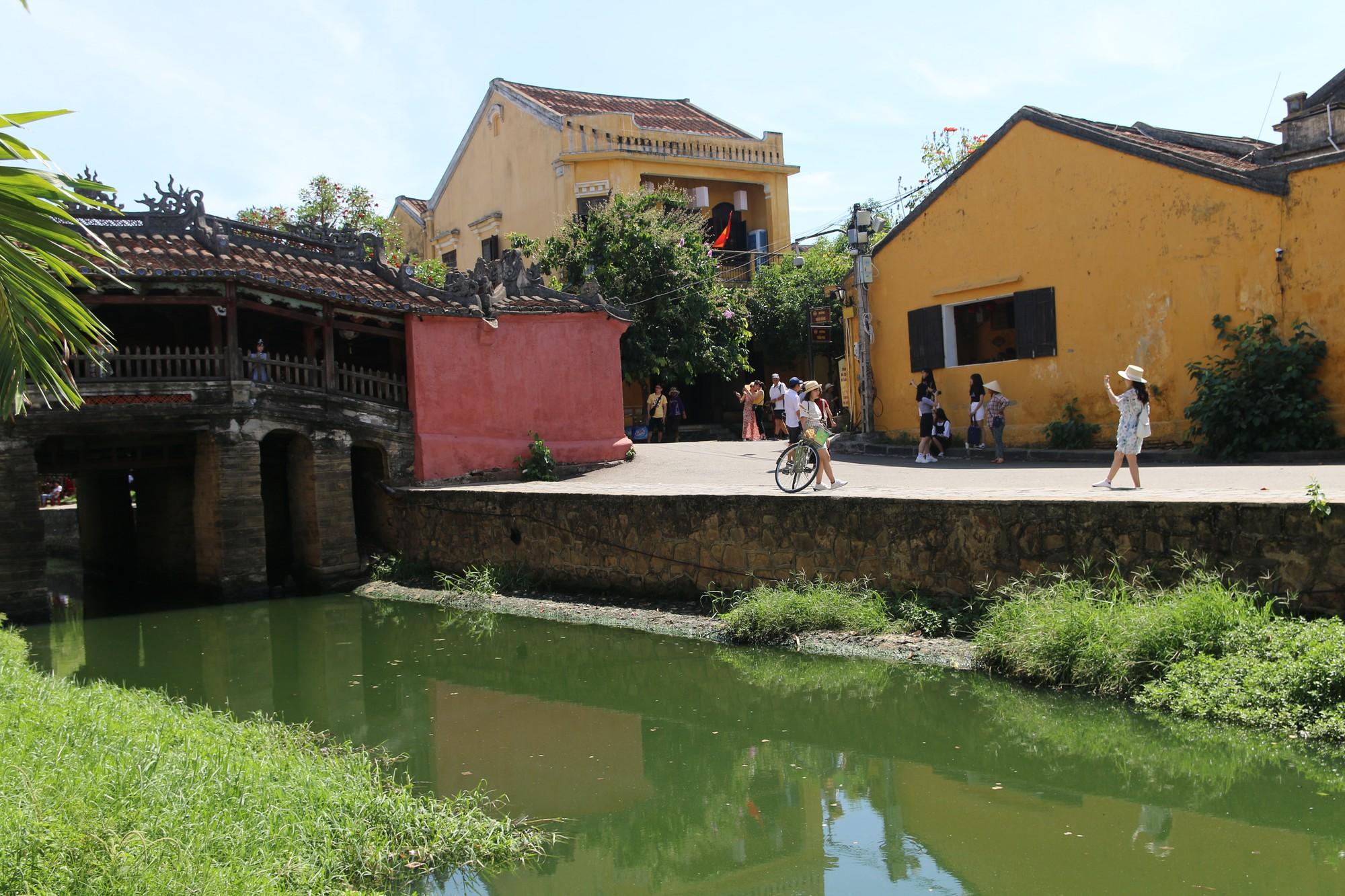Khách du lịch nín thở vì nước thải, ô nhiễm ở Chùa Cầu Hội An - Ảnh 6.