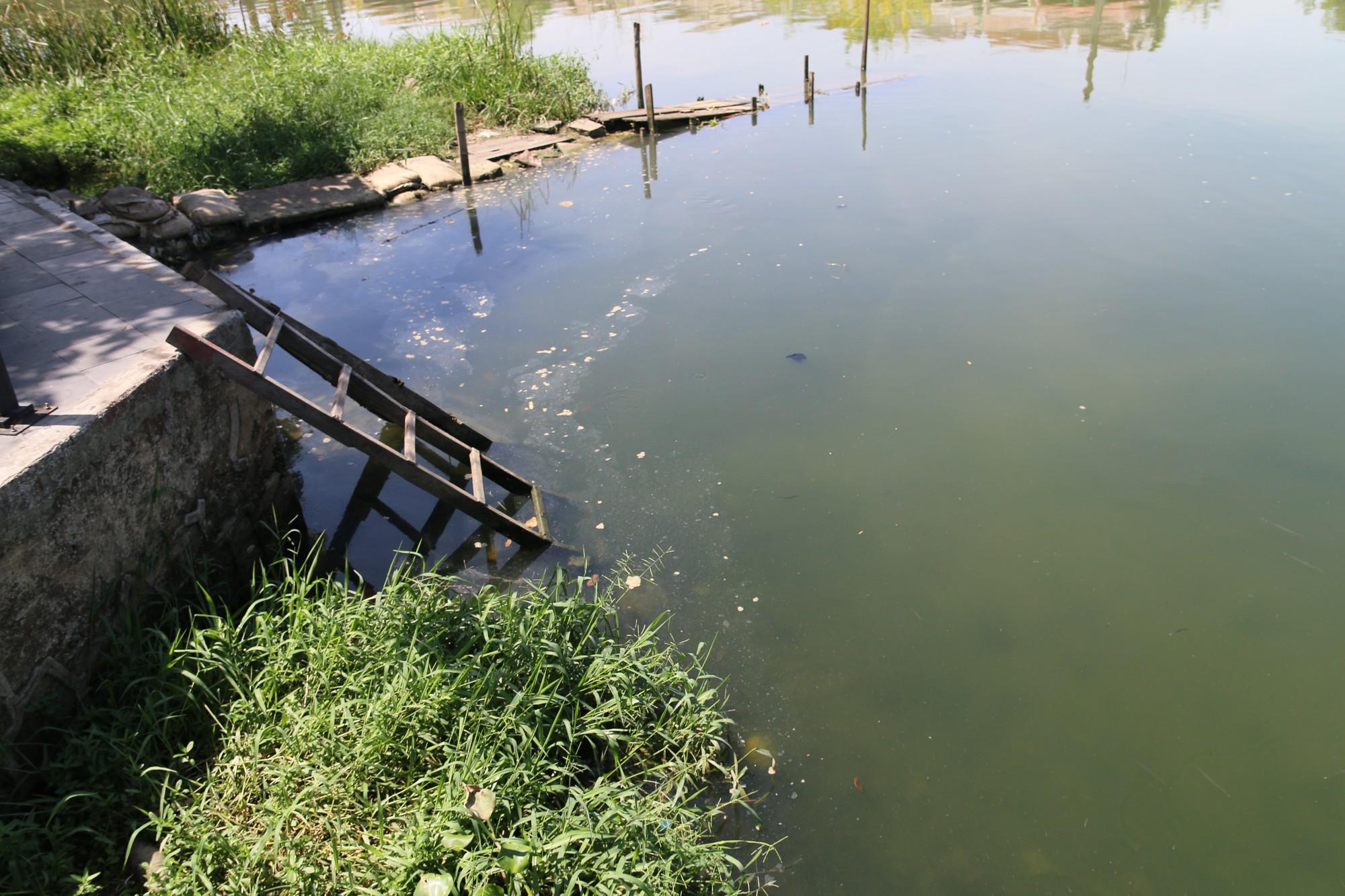 Khách du lịch nín thở vì nước thải, ô nhiễm ở Chùa Cầu Hội An - Ảnh 12.
