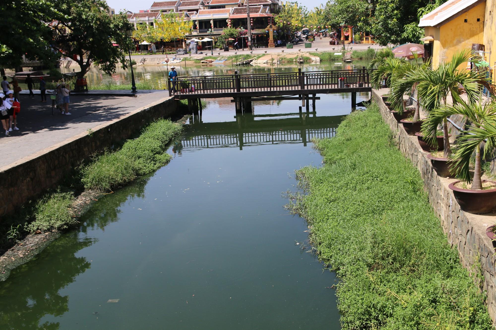 Khách du lịch nín thở vì nước thải, ô nhiễm ở Chùa Cầu Hội An - Ảnh 11.