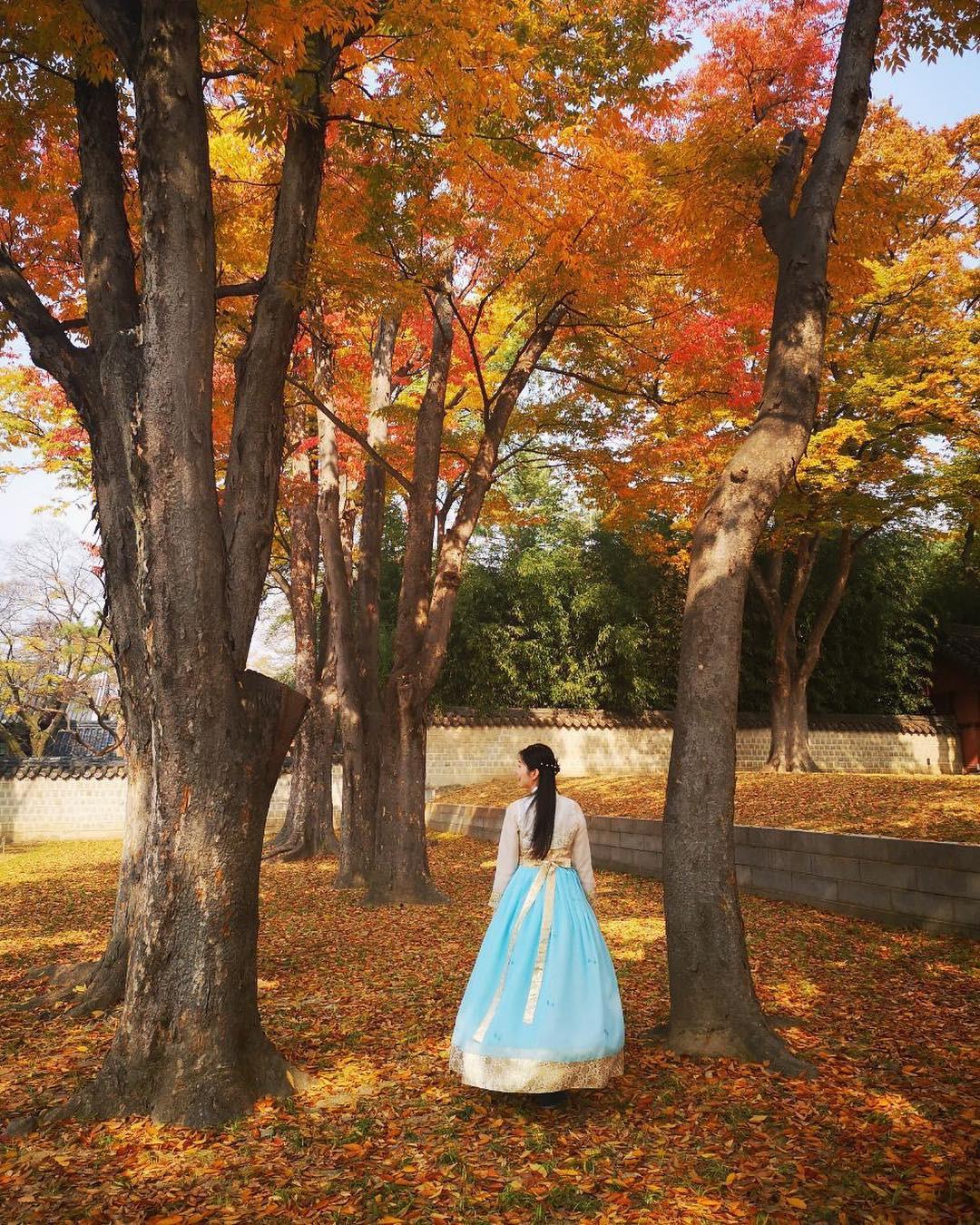 Thong thong khám phá văn hóa truyền thống tại 5 ngôi làng cổ đặc sắc nhất xứ Hàn - Ảnh 18.