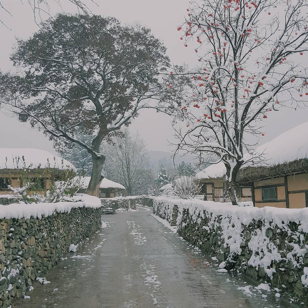 Thong thong khám phá văn hóa truyền thống tại 5 ngôi làng cổ đặc sắc nhất xứ Hàn - Ảnh 26.