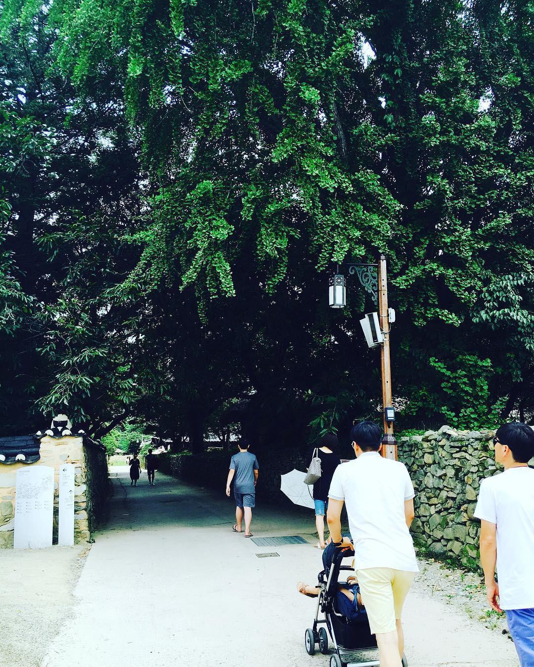 Thong thong khám phá văn hóa truyền thống tại 5 ngôi làng cổ đặc sắc nhất xứ Hàn - Ảnh 30.
