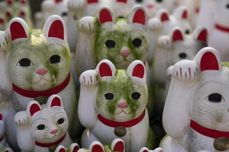Bí mật tượng mèo may mắn bên trong ngôi đền ở Tokyo - Ảnh 1.