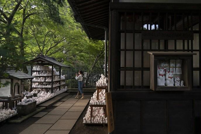Bí mật tượng mèo may mắn bên trong ngôi đền ở Tokyo - Ảnh 2.