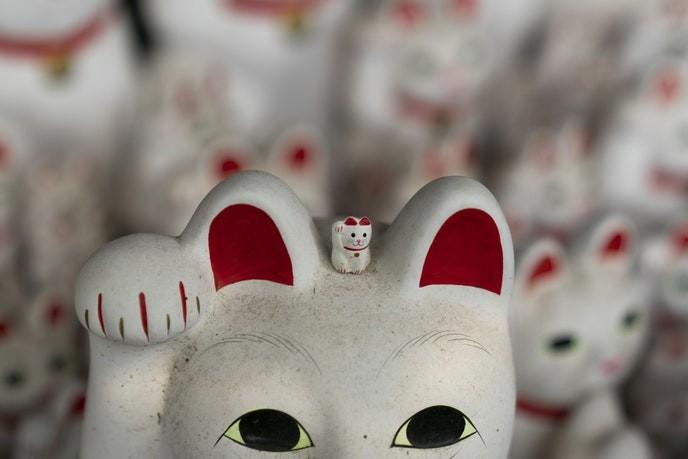 Bí mật tượng mèo may mắn bên trong ngôi đền ở Tokyo - Ảnh 4.