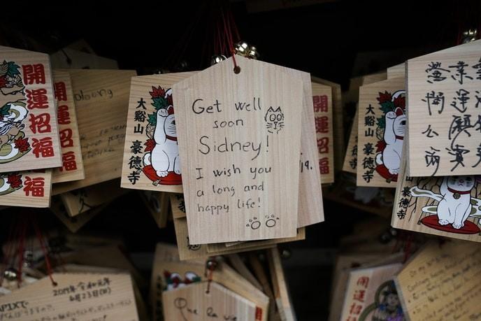 Bí mật tượng mèo may mắn bên trong ngôi đền ở Tokyo - Ảnh 5.