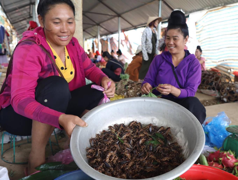 Chợ côn trùng ở vùng cao Tây Bắc - Ảnh 2.