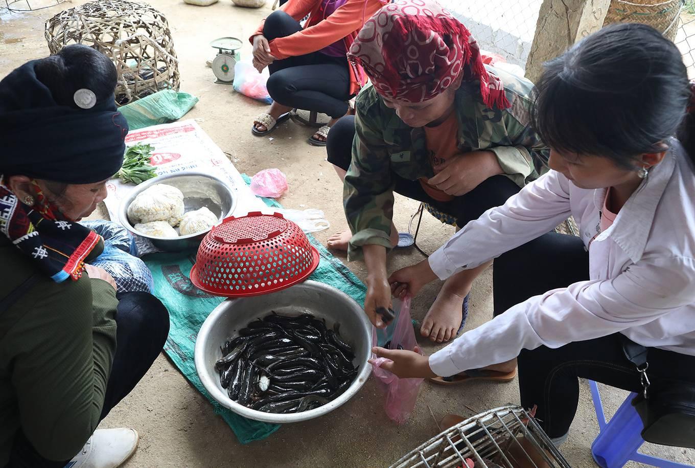 Chợ côn trùng ở vùng cao Tây Bắc - Ảnh 7.