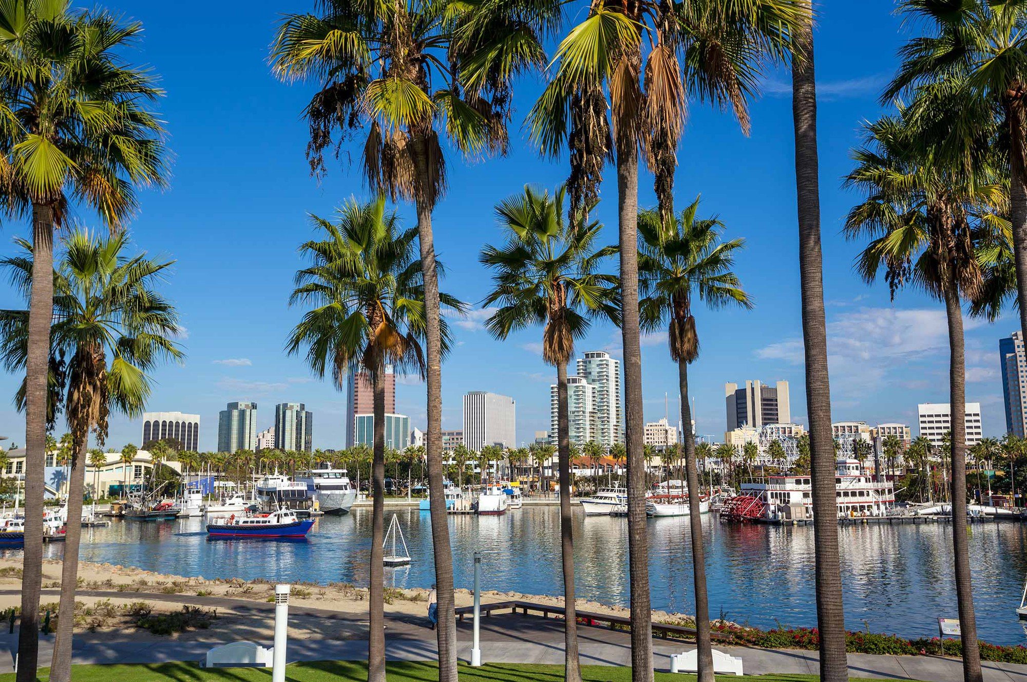 know-before-you-go-about-long-beach