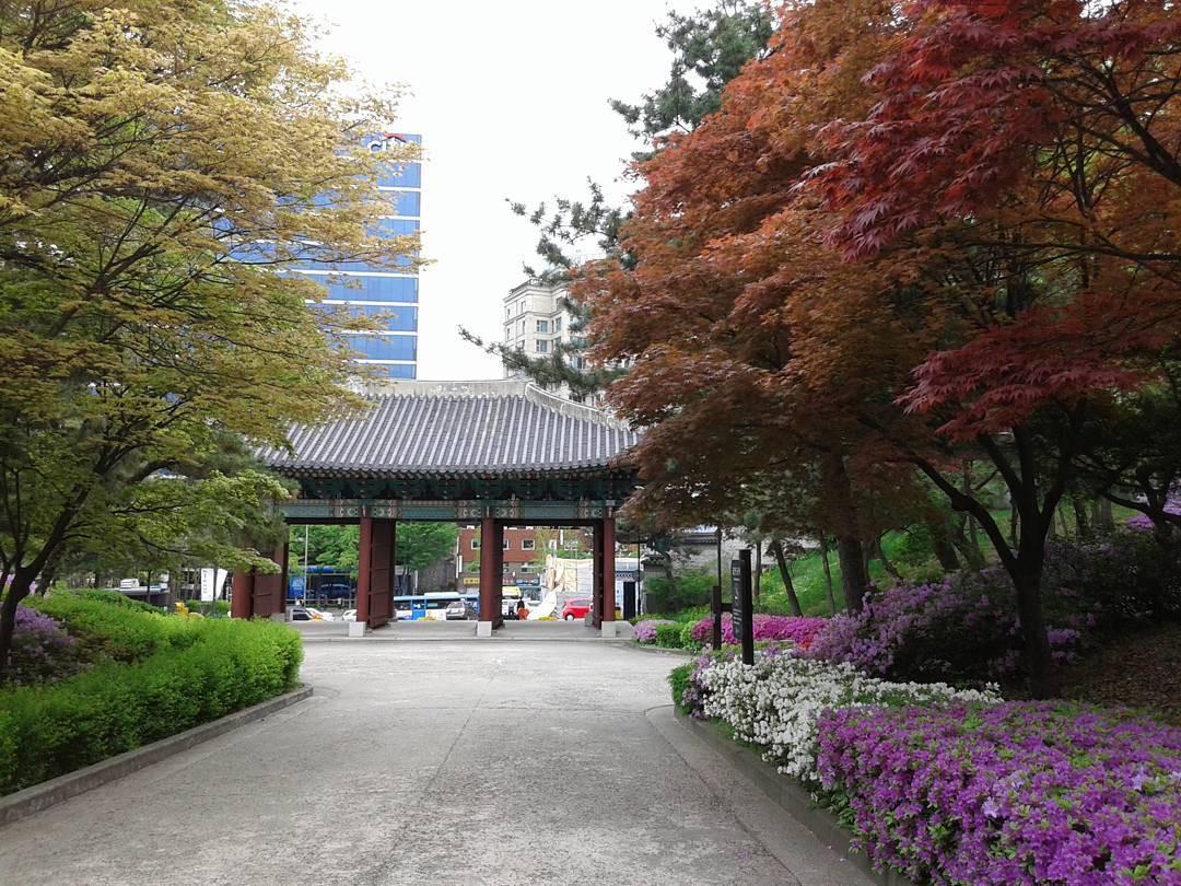 Lạc lối ở Seoul với những cung điện thường thấy trong các bộ phim cổ trang Hàn Quốc - Ảnh 19.
