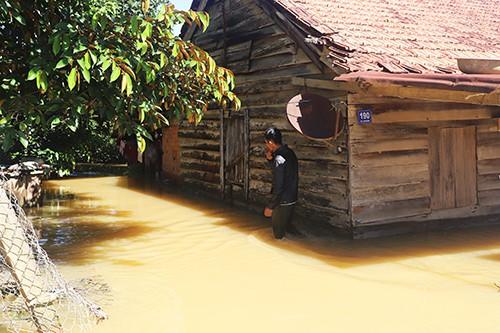 Hàng trăm căn nhà ở Lâm Đồng chìm trong nước sau mưa lớn - Ảnh 1.