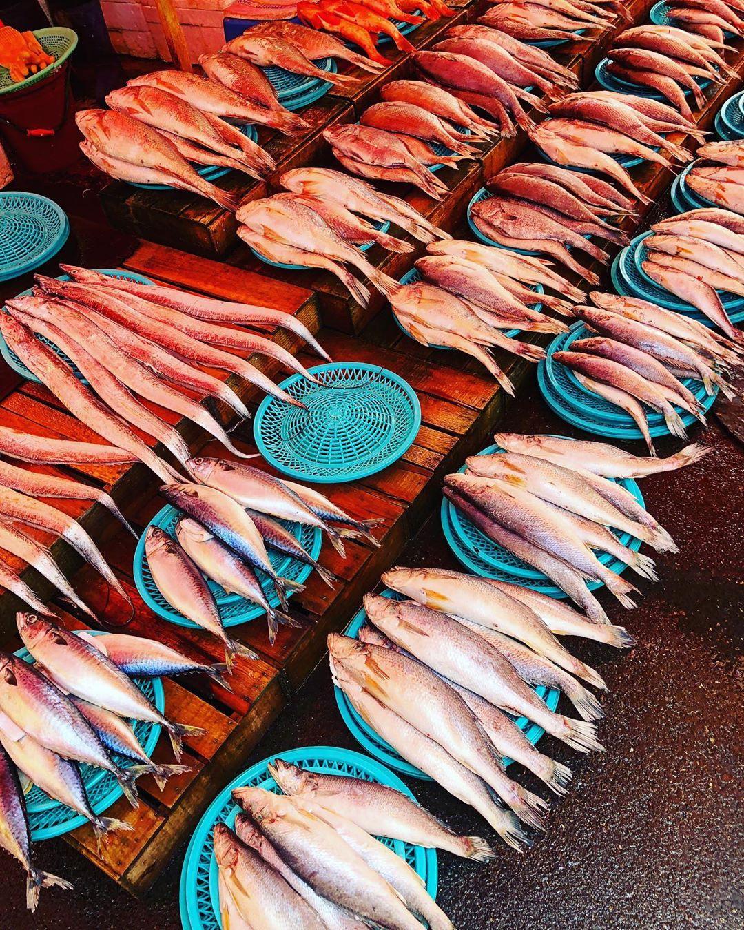 Ăn chơi phủ phê tại 4 khu chợ nổi tiếng nhất Hàn Quốc - Ảnh 5.