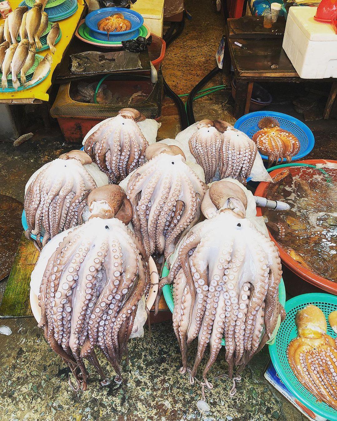 Ăn chơi phủ phê tại 4 khu chợ nổi tiếng nhất Hàn Quốc - Ảnh 7.