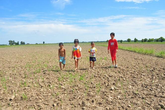 Tận thấy miền Tây trong đợt khô hạn nhất lịch sử - Ảnh 2.