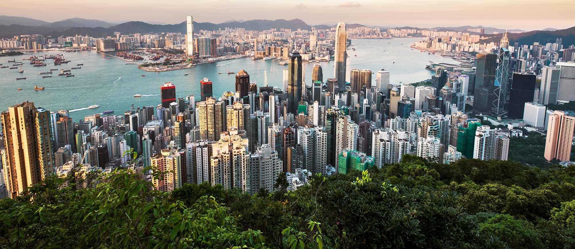 Hong_Kong_thin