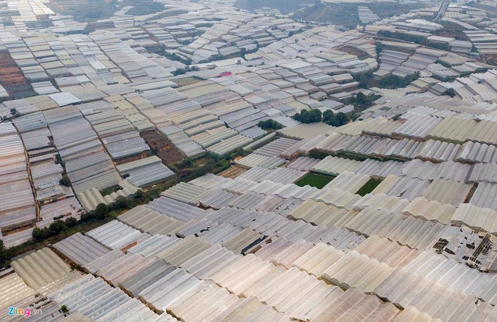 Nhà kính phủ trắng đồi khiến Đà Lạt thành sông - Ảnh 14.