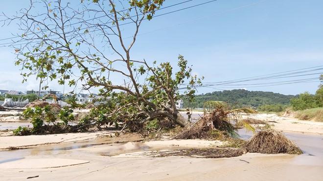 Đoạn bờ biển Phú Quốc tan hoang sau hai trận ngập lịch sử - Ảnh 11.