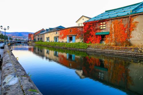 Hokkaido, vùng đất đón mùa thu sớm nhất Nhật Bản - Ảnh 3.