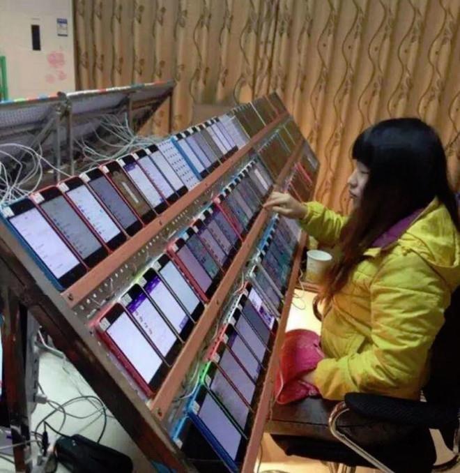 Những nông trại 'cày view' bằng điện thoại, kiếm tiền từ giá trị ảo - Ảnh 3.