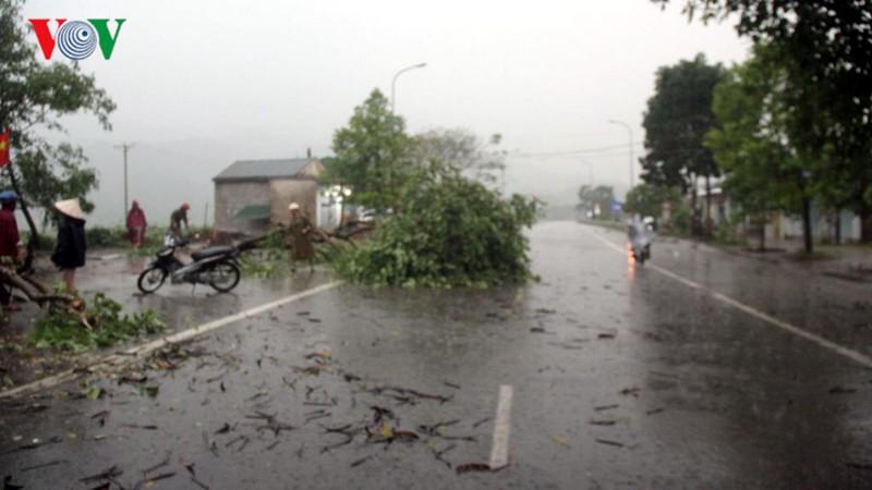Dự báo thời tiết hôm nay: Nhiều tỉnh, thành có mưa to, dông, lốc - Ảnh 1.