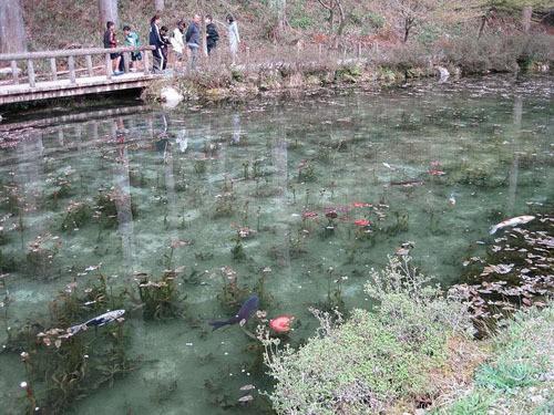 Hồ nước nổi tiếng vì trông như tranh - Ảnh 1.