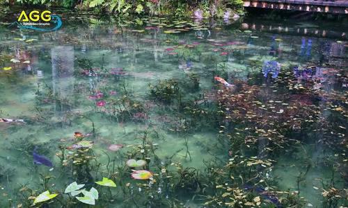 Hồ nước nổi tiếng vì trông như tranh - Ảnh 2.
