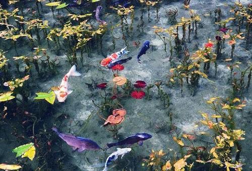 Hồ nước nổi tiếng vì trông như tranh - Ảnh 3.