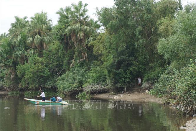 Nghiêm cấm đánh bắt thủy hải sản trên khúc sông nghi có cá sấu - Ảnh 1.