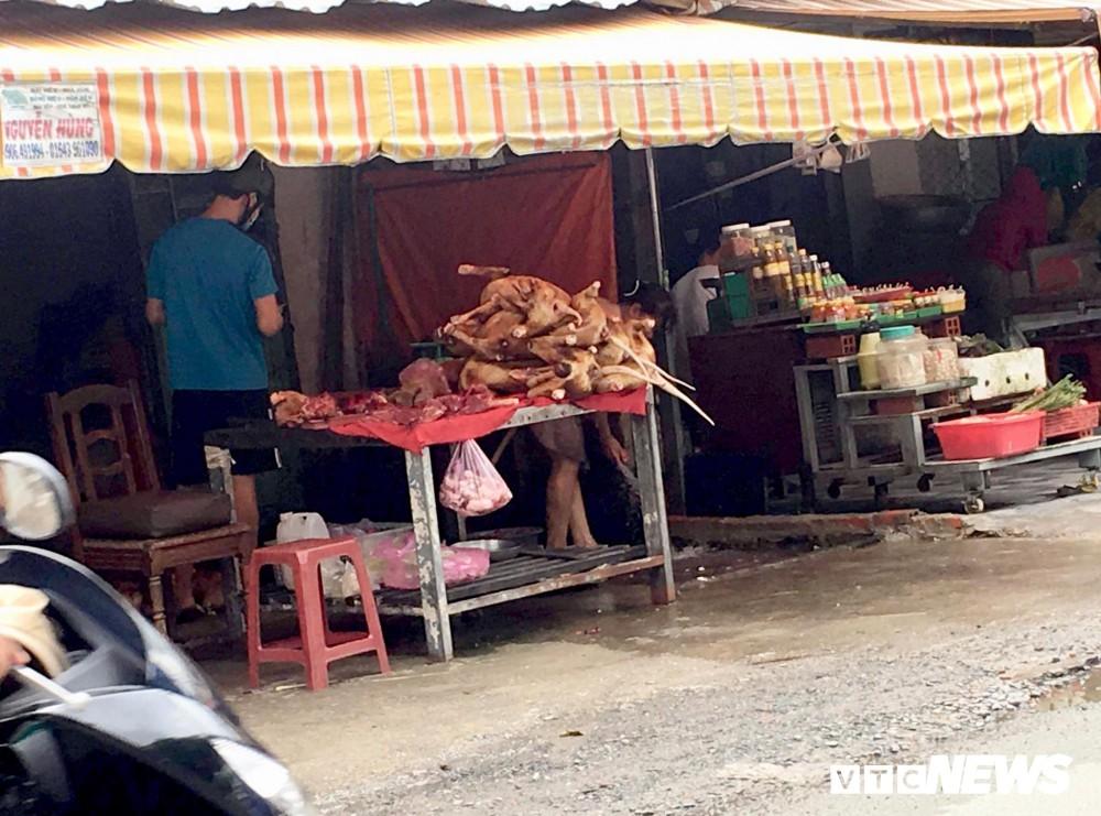 Chính quyền khuyên bỏ ăn thịt chó, dân TP HCM nói gì? - Ảnh 1.