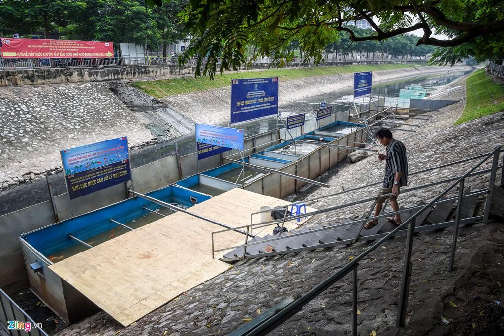 Cá Koi lờ đờ, chết ngửa bụng sau 2 ngày ở bể xử lí nước sông Tô Lịch - Ảnh 4.