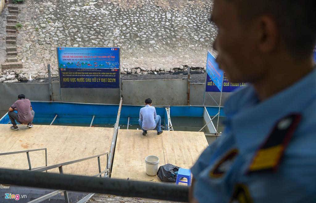 Cá Koi lờ đờ, chết ngửa bụng sau 2 ngày ở bể xử lí nước sông Tô Lịch - Ảnh 8.