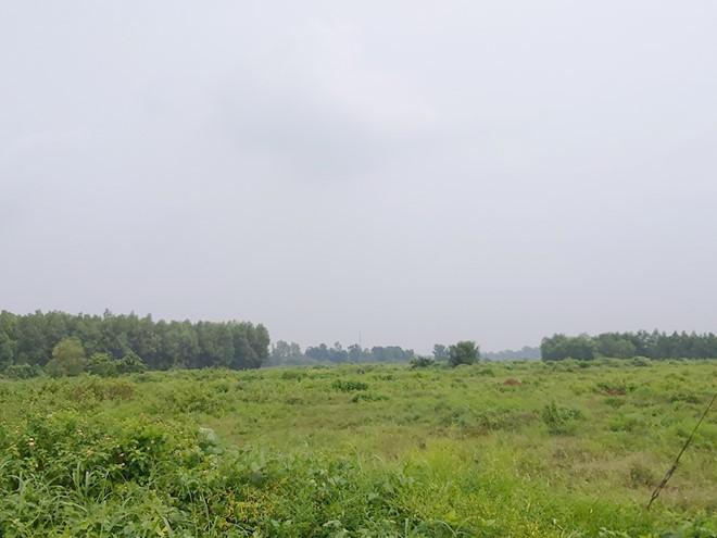 Alibaba thu hơn 770 tỉ ở Bà Rịa - Vũng Tàu, 3.333 nền đất đầy cỏ dại - Ảnh 4.
