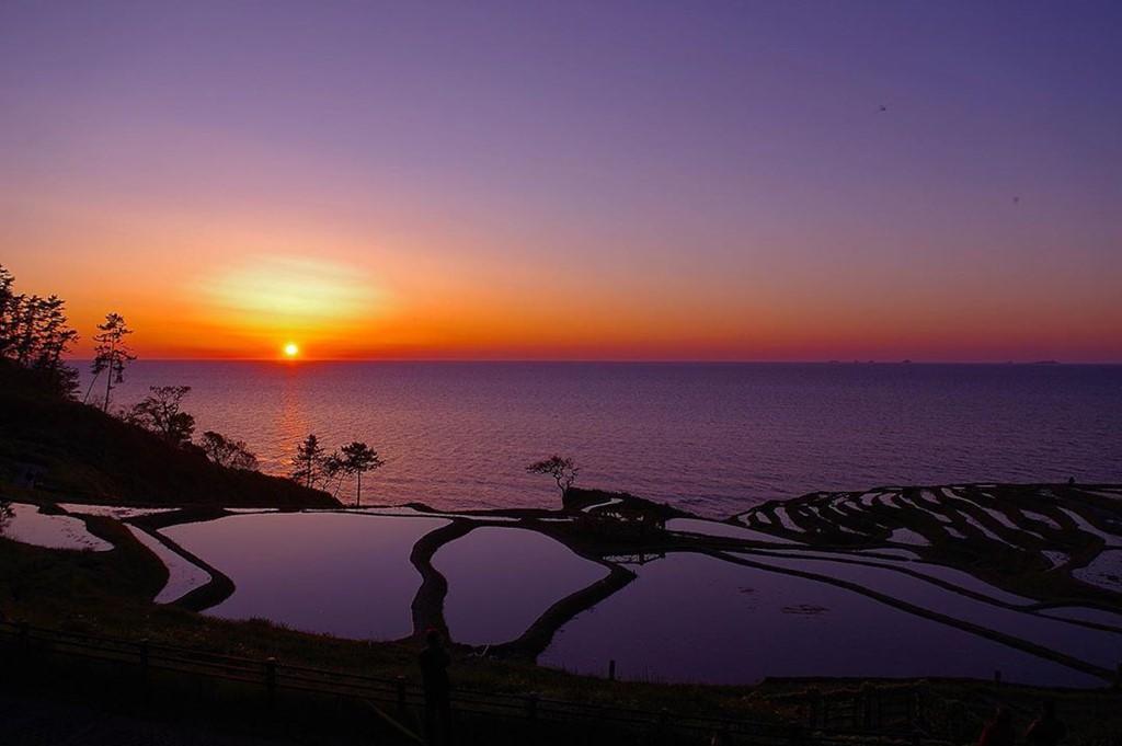 Ruộng bậc thang phát sáng bên bờ biển thu hút du khách - Ảnh 5.