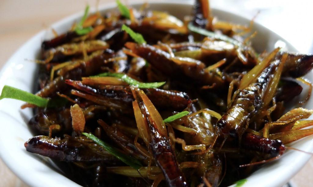 5 goi y cho chuyen di Mu Cang Chai tron ven hinh anh 16