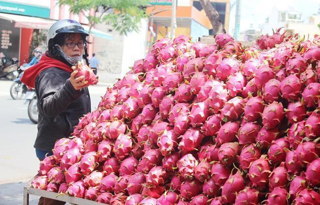 Trung Quốc không mua, dưa hấu, thanh long rớt giá còn 6.000 đồng/kg - Ảnh 1.