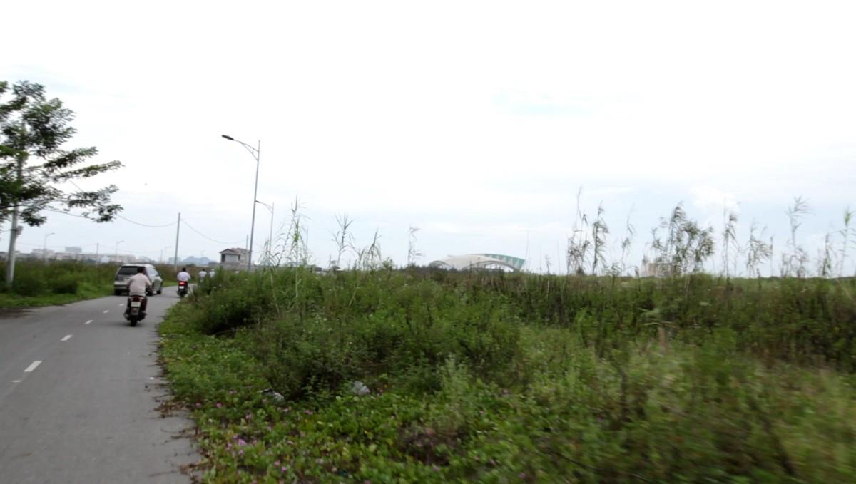 Bãi lau sậy phía Đông Nam tượng đài 2-9  của thành phố Đà Nẵng ngày trước