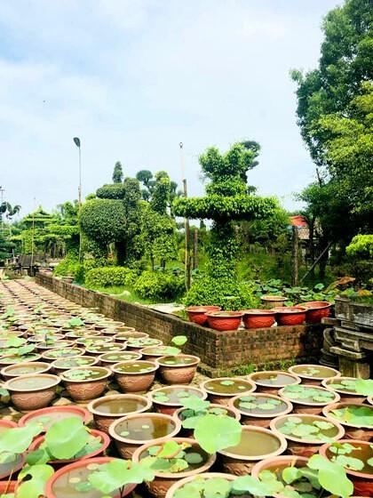 48 giờ ăn chơi ở Nam Định - Ảnh 2.