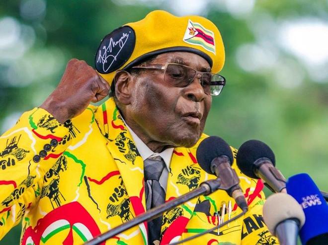 Cựu Tổng thống Zimbabwe Robert Mugabe giàu có cỡ nào? - Ảnh 12.