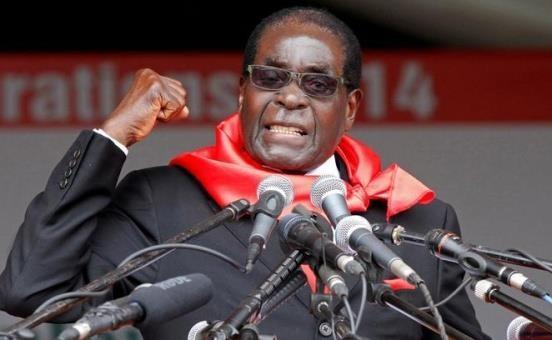 Cựu Tổng thống Zimbabwe Robert Mugabe giàu có cỡ nào? - Ảnh 3.