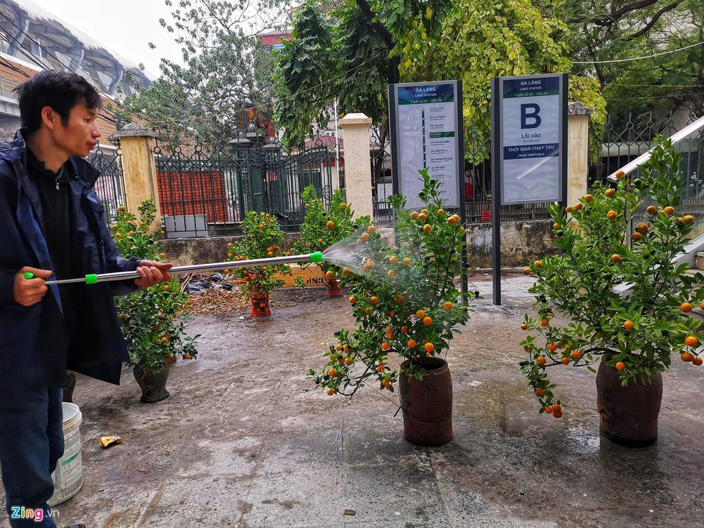 Đường sắt Cát Linh chưa hoạt động, nha ga thành chợ cây cảnh Tết - Ảnh 7.