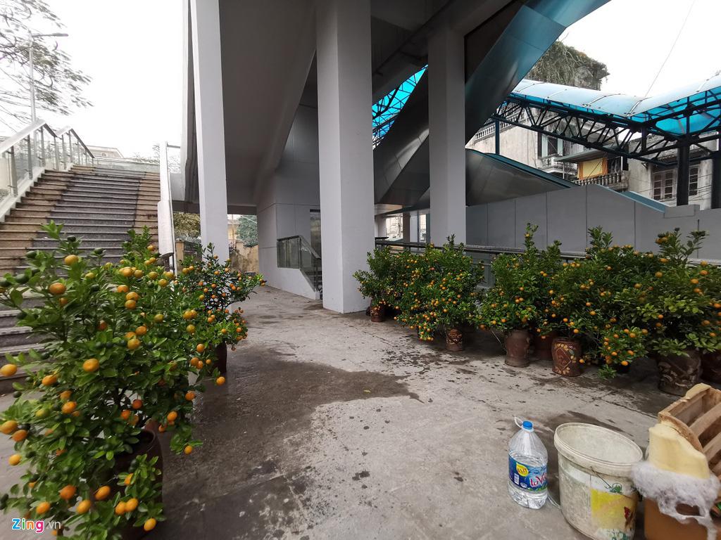 Đường sắt Cát Linh chưa hoạt động, nha ga thành chợ cây cảnh Tết - Ảnh 8.