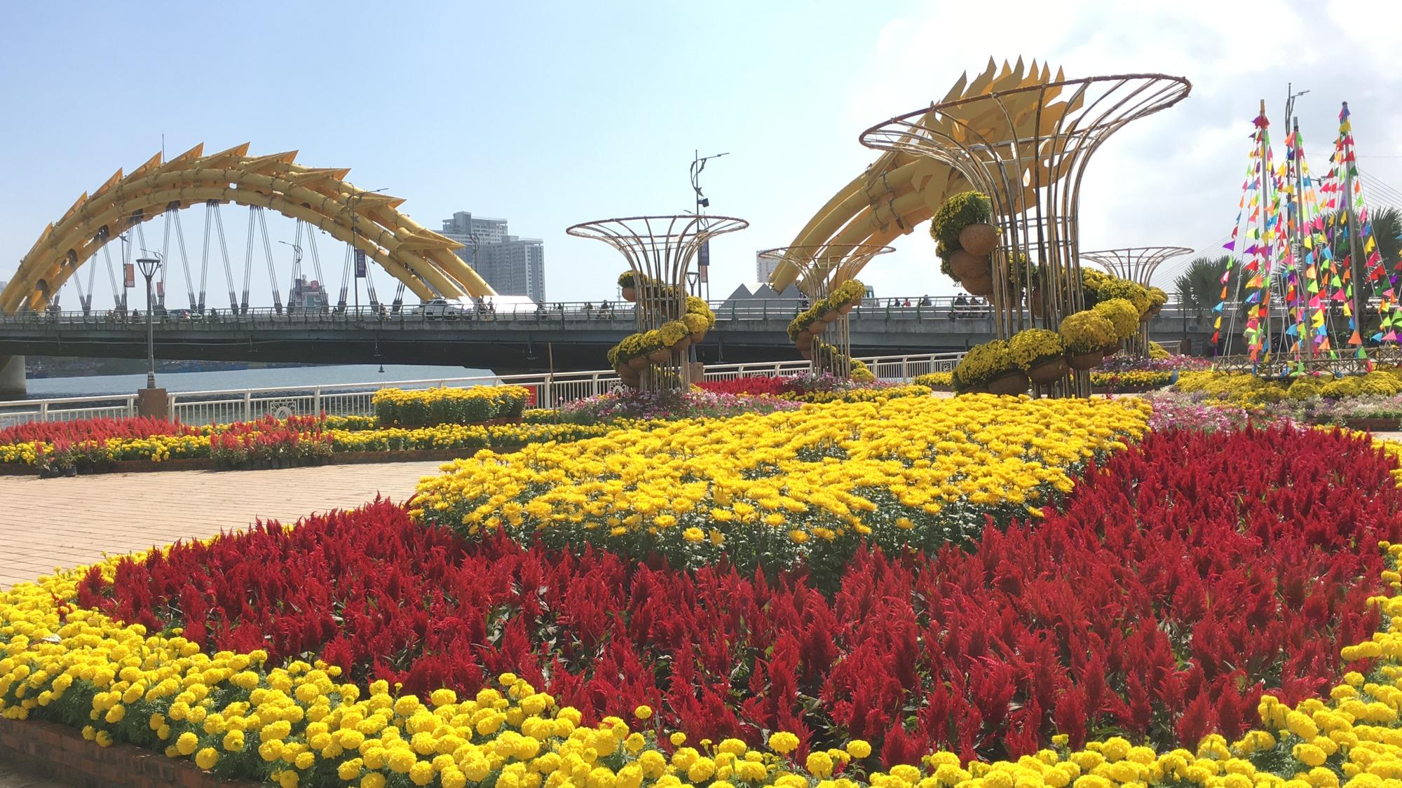 Hối hả thi công đường hoa Đà Nẵng để người dân tham quan, chơi Tết Canh Tý 2020 - Ảnh 7.