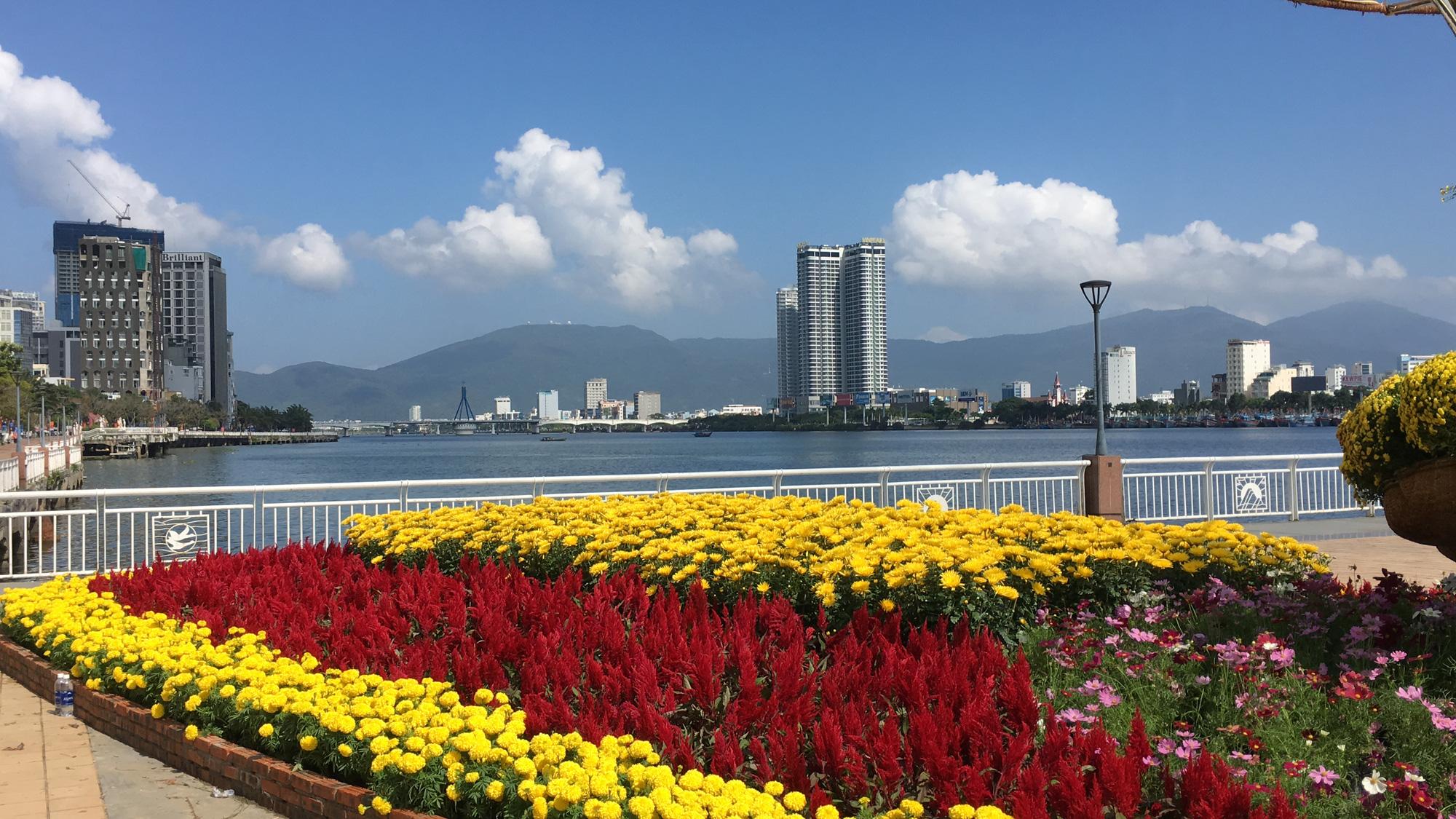 Hối hả thi công đường hoa Đà Nẵng để người dân tham quan, chơi Tết Canh Tý 2020 - Ảnh 8.