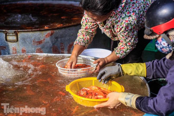 Chợ cá lớn nhất Hà Nội tất bật trước ngày ông Công ông Táo - Ảnh 1.