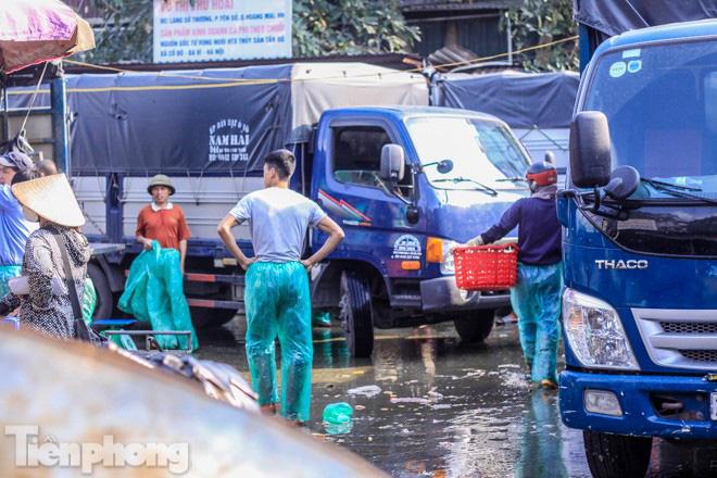 Chợ cá lớn nhất Hà Nội tất bật trước ngày ông Công ông Táo - Ảnh 8.